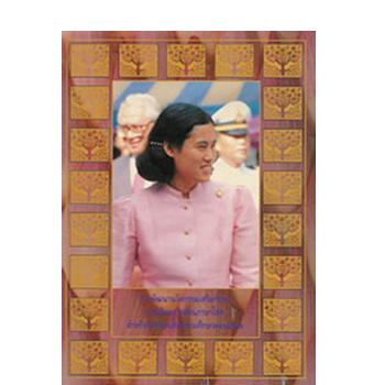 การพัฒนานวัตกรรมเสริมทักษะการเรียนการสอนภาษาไทย สำหรับนักเรียนชั้นมัธยมศึกษาตอนปลาย <br>ปีที่พิมพ์ 2534