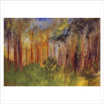 ป่าในเขตพระตำหนักภูพานราชนิเวศน์
